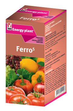 Energy plant ferro 5