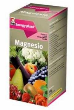 Energy plant magnesio